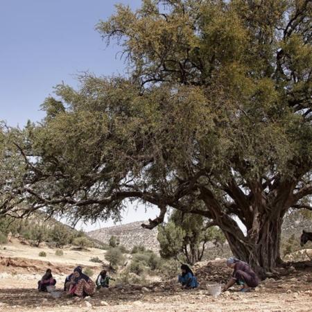 Graine de malice - Maroc - WECF - Annabelle Avril Photographie #1
