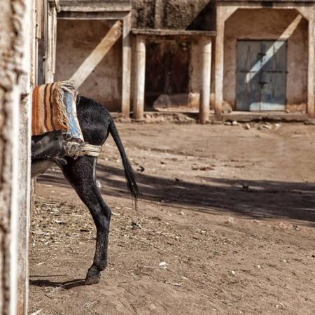 Graine de malice - Maroc - WECF - Annabelle Avril Photographie #13