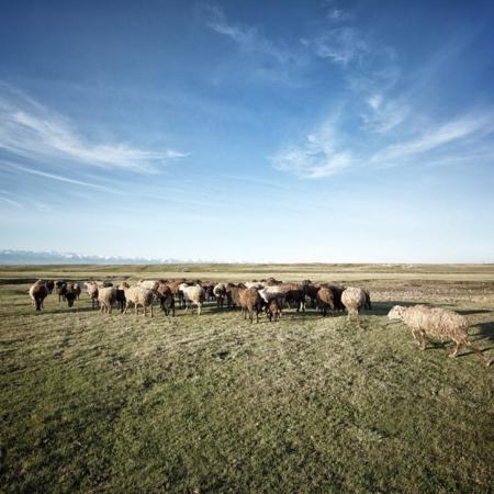 L'histoire d'eau d'An Oston - Kirghizstan - WECF - Annabelle Avril Photographie #23