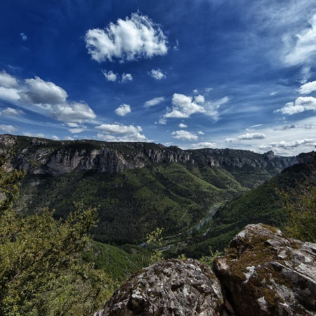 Parc des Grands Causses - Aveyron - Annabelle Avril Photographie #10