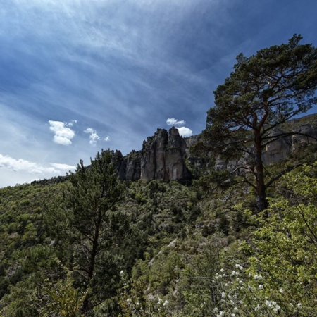 Parc des Grands Causses - Aveyron - Annabelle Avril Photographie #14