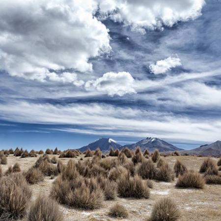 Parc de Sajama - Bolivie - Annabelle Avril Photographie #13