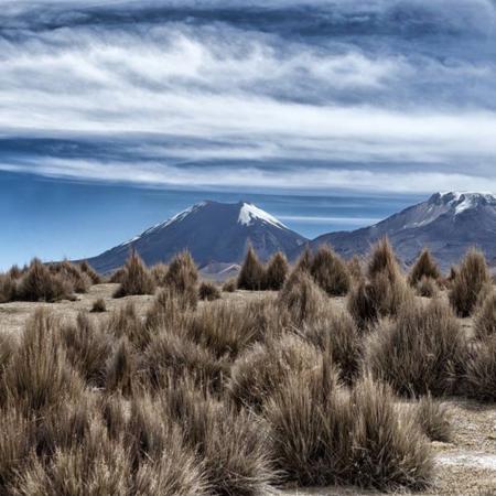 Parc de Sajama - Bolivie - Annabelle Avril Photographie #14