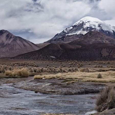 Parc de Sajama - Bolivie - Annabelle Avril Photographie #6