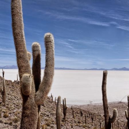 Salar de Uyuni - Bolivie - Annabelle Avril Photographie #14