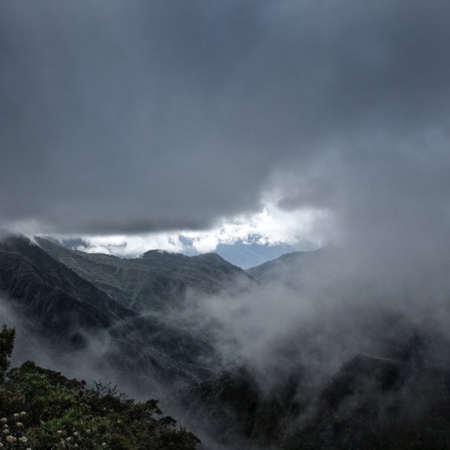 Yungas - Bolivie - Annabelle Avril Photographie #1