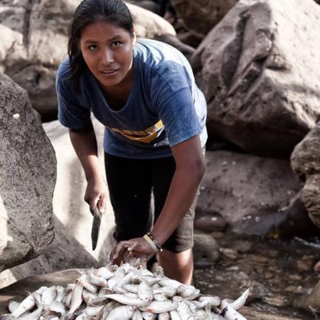 Se vende pescado fresco - Pérou - Annabelle Avril Photographie #18