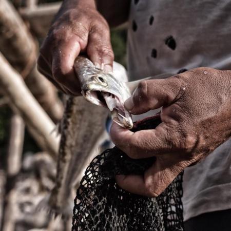 Se vende pescado fresco - Pérou - Annabelle Avril Photographie #26